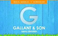 Gallant & Son Small Engines